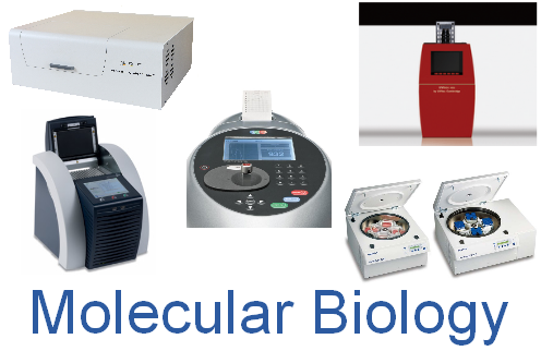 mole_bio_products